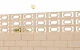 balustrade-celosia-carnaval