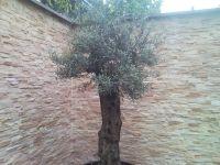 kunststeinpaneele-bari-mediterran-3