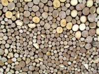 Holzpaneele - For-Rest - Sticks